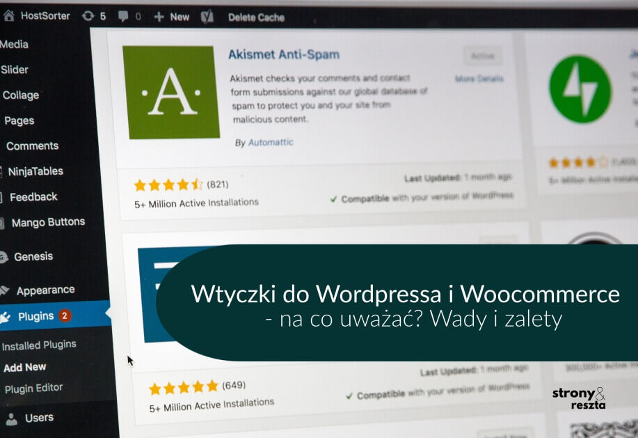 wtyczki do WordPressa i Woocommerce